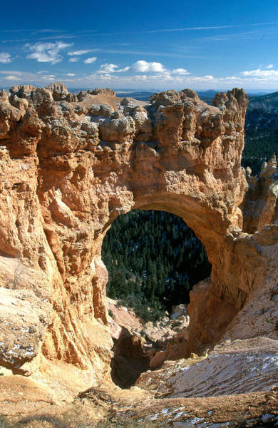 Wall Art - Photograph - Bryce Canyon National Park by David Hosking