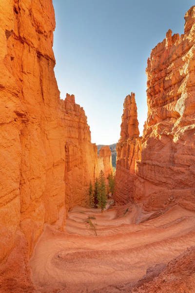 Wall Art - Photograph - Bryce Canyon National Park Wall Street - Utah by Brian Harig