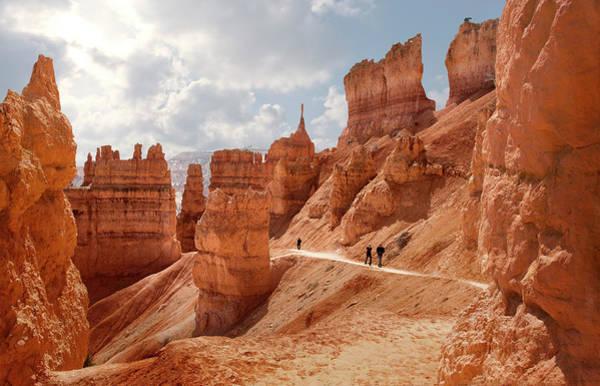 Photograph - Bryce Canyon, Navajo Loop Trail by Ed Freeman