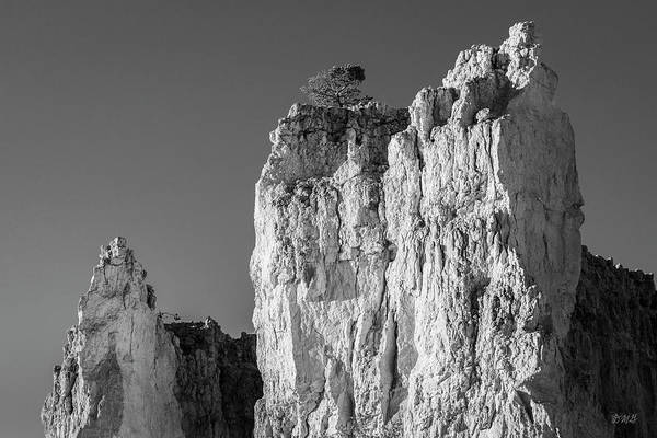 Photograph - Bryce Canyon Np Viii Bw by David Gordon
