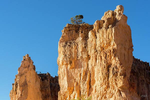 Photograph - Bryce Canyon Np Viii Color by David Gordon