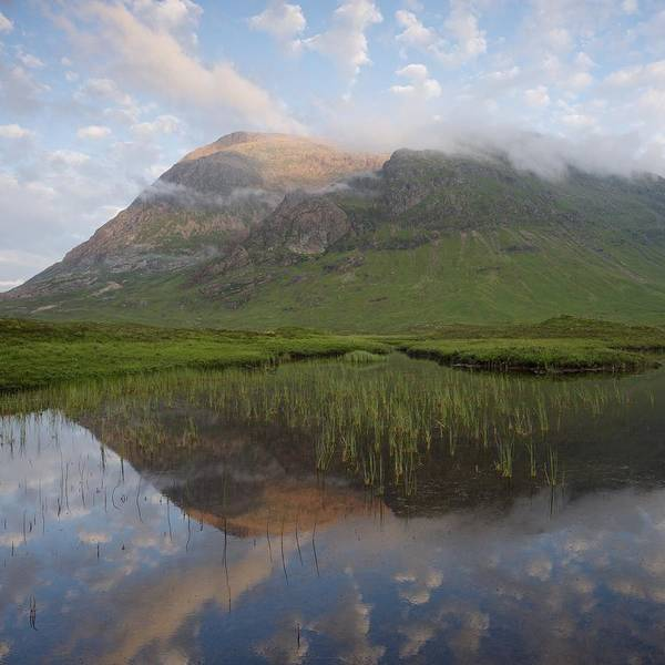 Photograph - Buachaille Etive Mor Reflected In Lochan Na Fola by Stephen Taylor