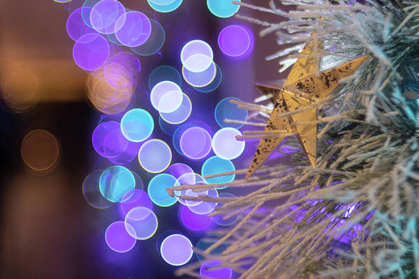Photograph - Bubble Bokeh And Star by Brian Hale