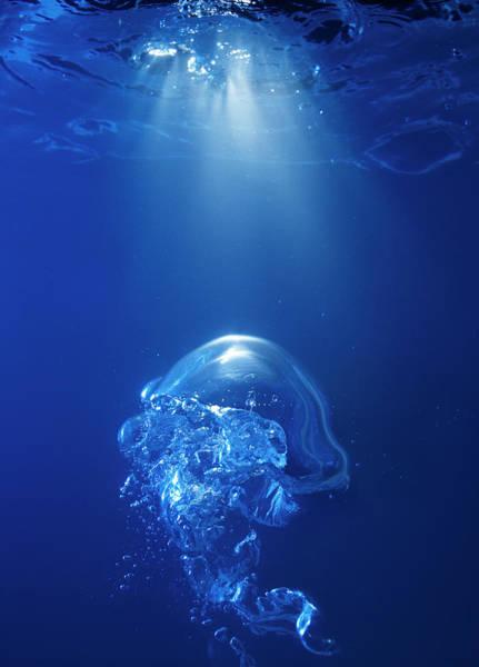Bubble Photograph - Bubble On Spot Light In Blue Water by Biwa Studio