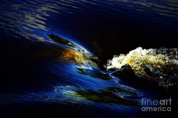 Photograph - Bubble Up by Merle Grenz