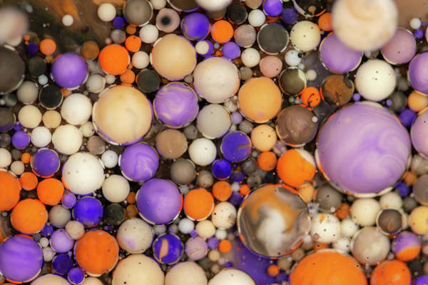 Digital Art - Bubbles Art - Cox by Nikolovi-Art