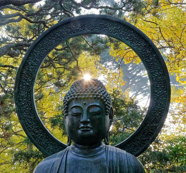 Photograph - Buddha Light - Japanese Tea Garden, San Francisco by KJ Swan