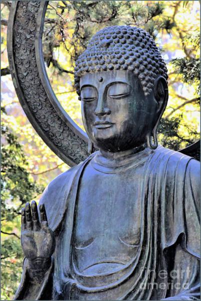 Wall Art - Photograph - Buddha Of The Garden by Diann Fisher