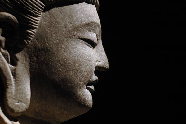 Xi Photograph - Buddha Statues by Eastimages