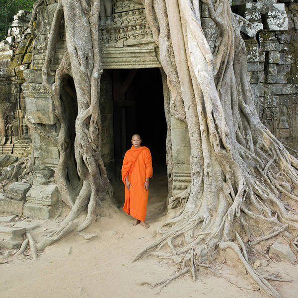Reap Photograph - Buddhist Monk Standing Next To Tree by Martin Puddy