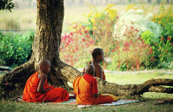 Nepal Wall Art - Photograph - Buddhist Monks At Meditation Under Tree by Lindsay Brown