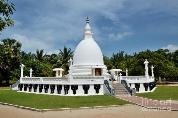 Photograph - Buddhist Stupa With Buddha Statue At The Dambakola Patuna Sangamitta Temple Complex Jaffna Sri Lanka by Imran Ahmed