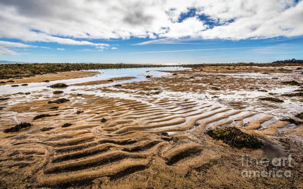 Photograph - Budir Beach, Iceland by Lyl Dil Creations