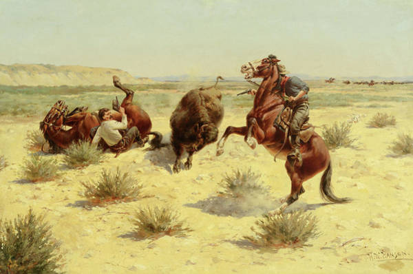 Wall Art - Painting - Buffalo Attack  by Herman W Hansen