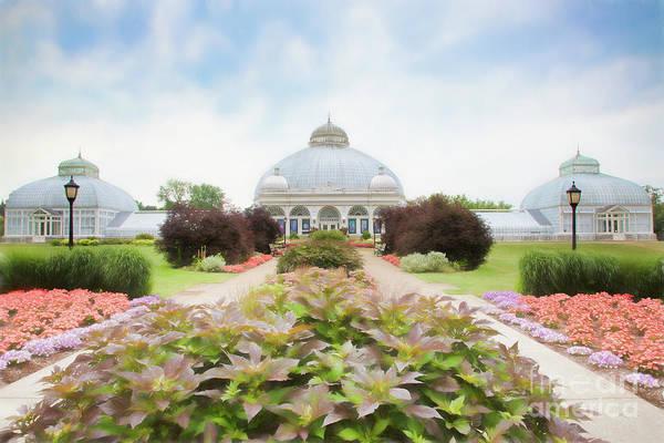 Photograph - Buffalo Botanic Gardens Conservatory by Marilyn Cornwell