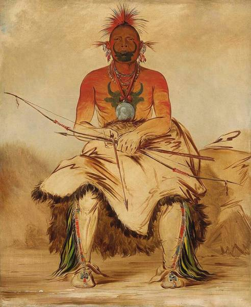 Wall Art - Painting - Buffalo Bull, A Grand Pawnee Warrior by George Catlin