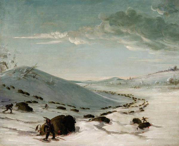 Wall Art - Painting - Buffalo Chase In Winter, Indians On Snowshoes by George Catlin