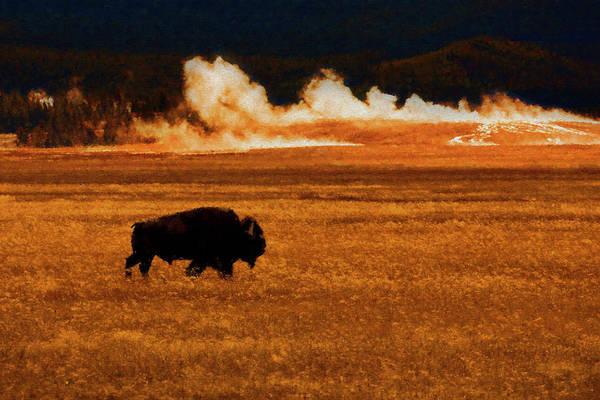 Digital Art - Buffalo Fire Sunset by Patricia Montgomery