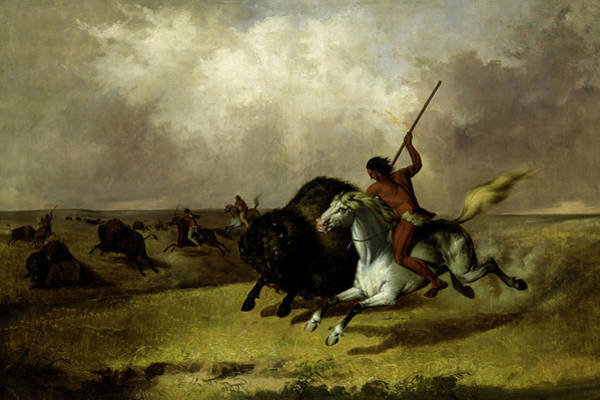 Wall Art - Painting - Buffalo Hunt On The Southwestern Prairies, 1845 by John Mix Stanley