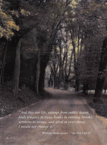 Photograph - Buffalo Road Shakespeare Quote Poster by Wayne King