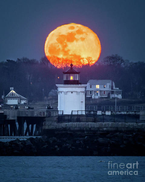 Wall Art - Photograph - Bug Light Moon by Benjamin Williamson