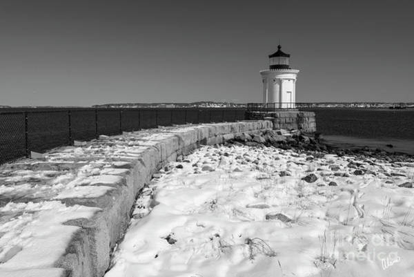 Photograph - Bug Light Winter Bw by Alana Ranney