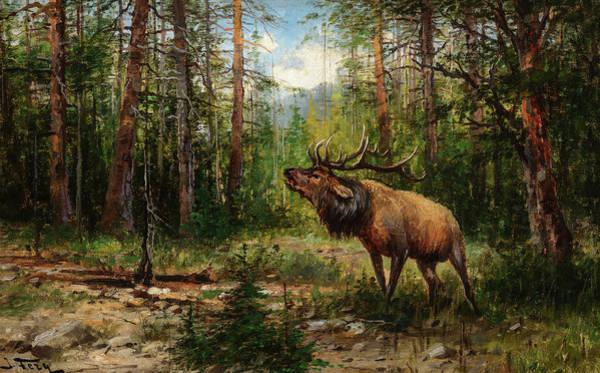 Wall Art - Painting - Bugling Elk by John Fery