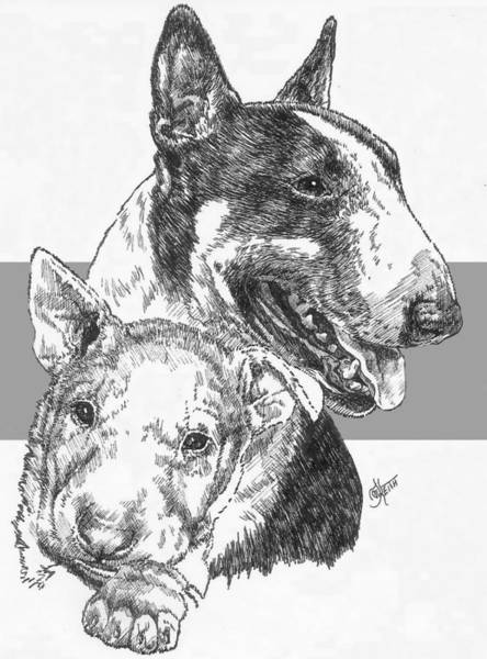 Drawing - Bull Terrier And Pup by Barbara Keith