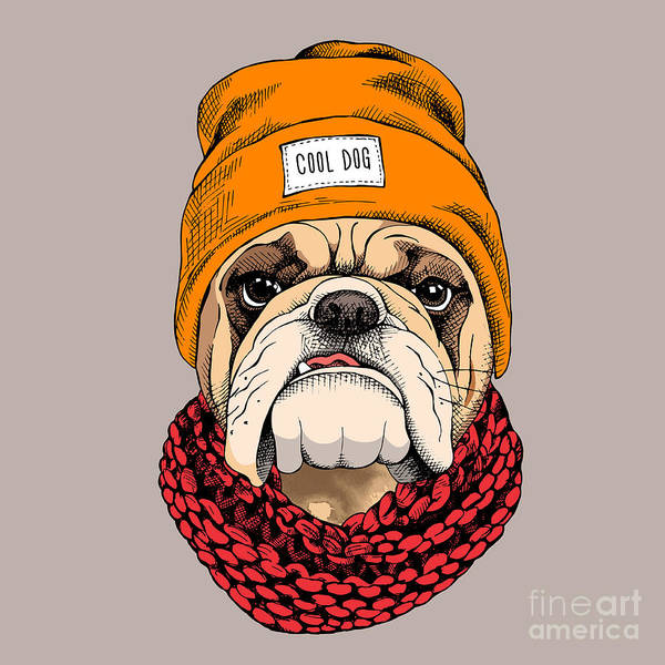 Wall Art - Digital Art - Bulldog Portrait In A Hipster Hat And by Afishka