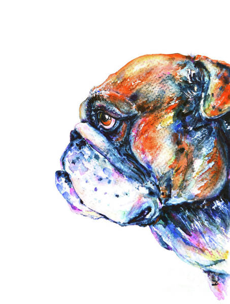 English Bulldog Painting - Bulldog by Zaira Dzhaubaeva