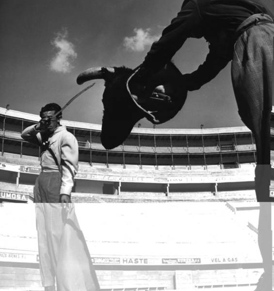 Wall Art - Photograph - Bullfighter by George Pickow