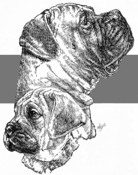 Drawing - Bullmastiff And Pup by Barbara Keith