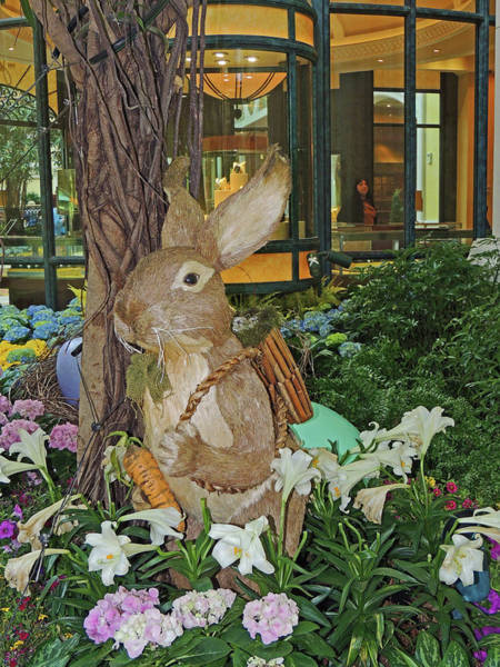 Greeters Photograph - Bunny Greeter by Marian Bell