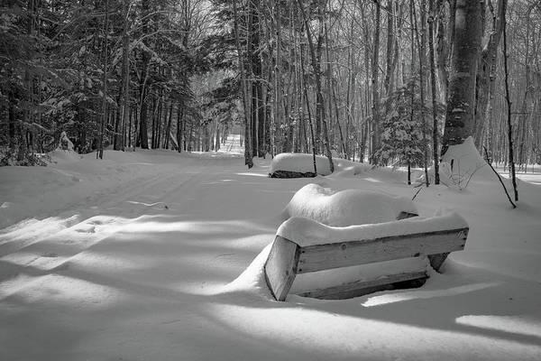 Photograph - Buried In Powder by David Heilman