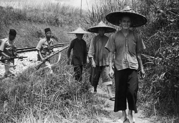 Rifle Photograph - Burmese Bandit Hunt by Bert Hardy