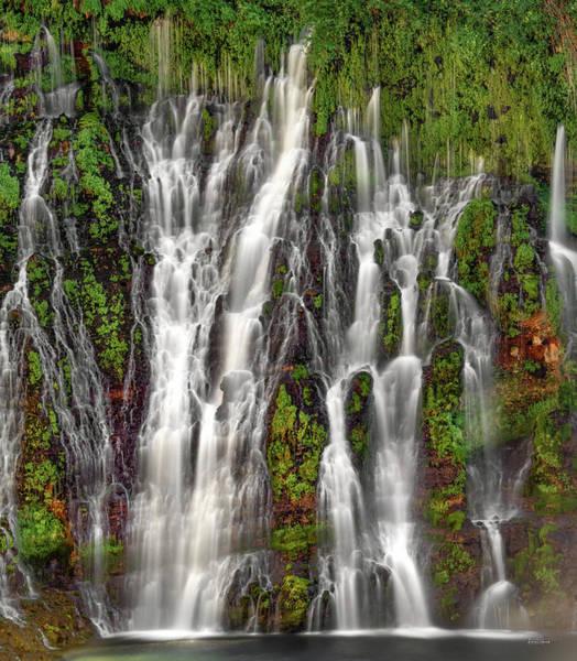 Appealing Wall Art - Photograph - Burnet Falls Textures by Leland D Howard