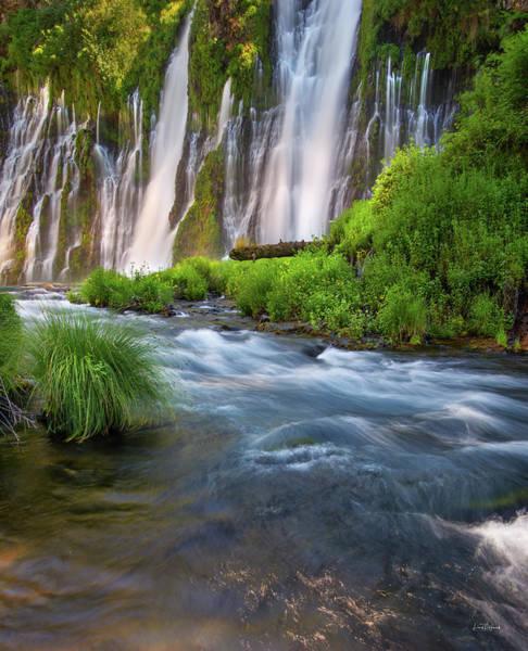 Magnificence Wall Art - Photograph - Burney Falls by Leland D Howard