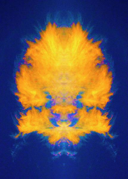 Photograph - Burning Bush Mandala by Paul W Faust - Impressions of Light