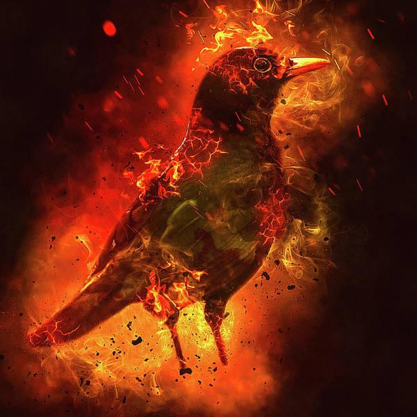 Wall Art - Digital Art - Burning Raven by Matthias Hauser