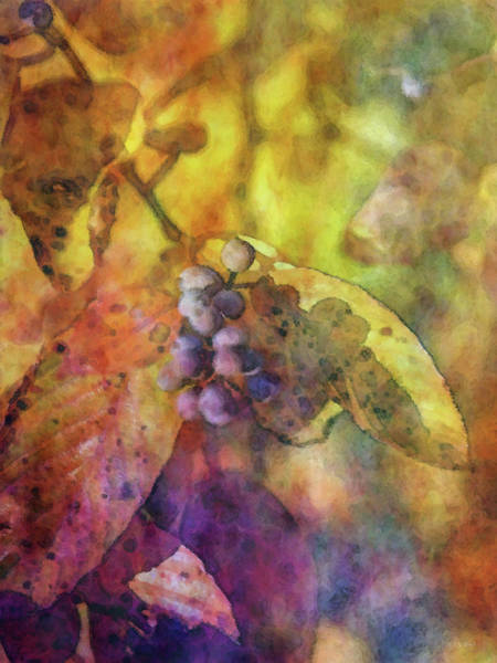 Photograph - Burnished Gold 6041 Idp_2 by Steven Ward