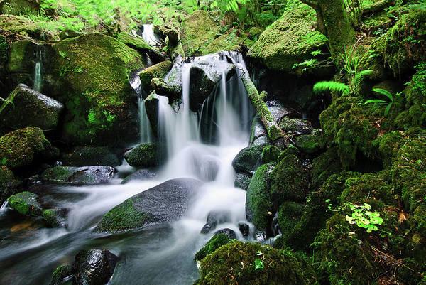 Plymouth Rock Photograph - Burrator Waterfall, Dartmoor by Alan Lomax Photography.