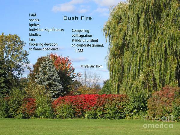 Photograph - Bush Fire by Ann Horn