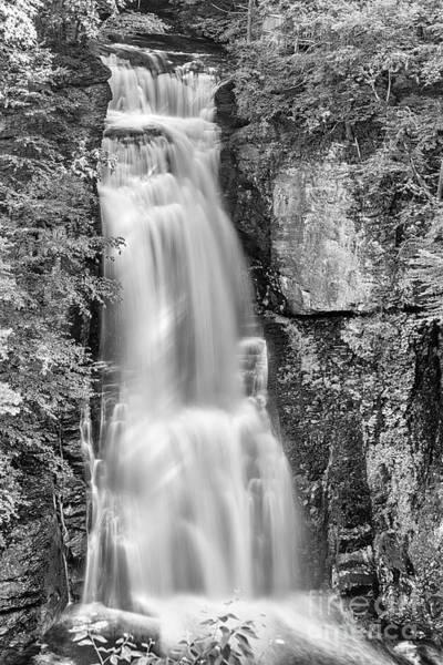 Photograph - Bushkill Falls by Anthony Sacco