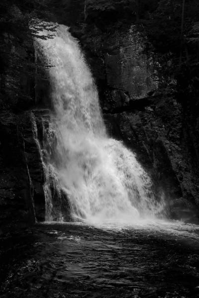 Photograph - Bushkill Falls In Black And White by Karen Silvestri