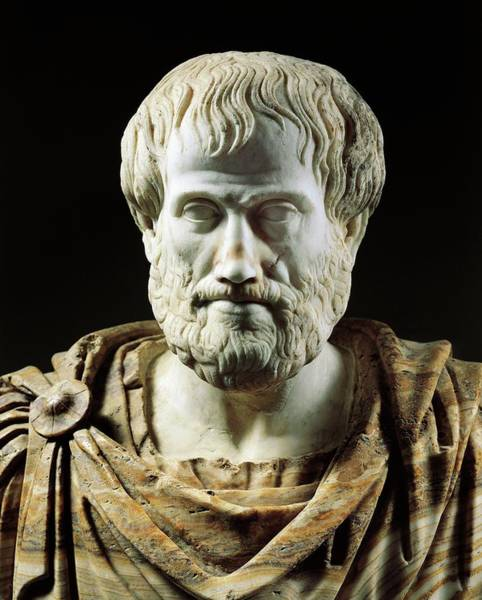 Alabaster Photograph - Bust Of Aristotle, Greek Philosopher And Scientist by Greek School