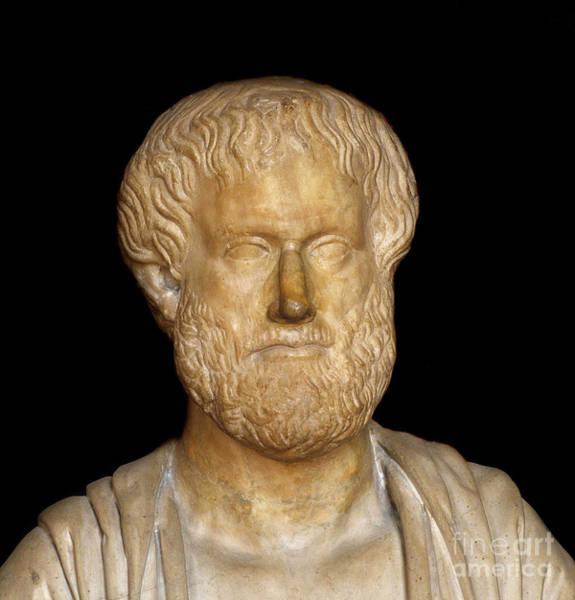 Wall Art - Sculpture - Bust Of The Greek Philosopher Aristotle by Greek School