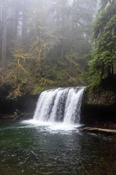 Photograph - Butte Creek Falls by Steven Clark