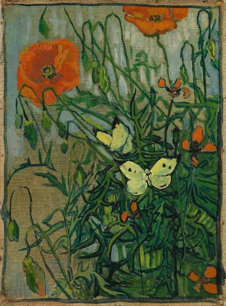 Wall Art - Painting - Butterflies And Poppies. by Vincent van Gogh -1853-1890-