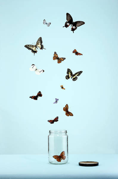 Bottle Cap Photograph - Butterflies Escaping From Jar by Martin Poole