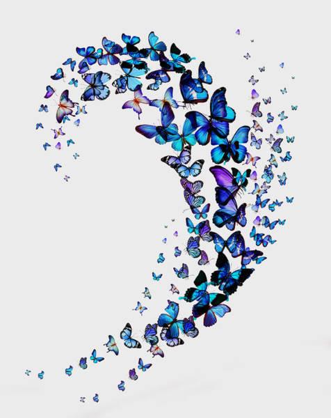 Wall Art - Pyrography - Butterflies by Mark Ashkenazi